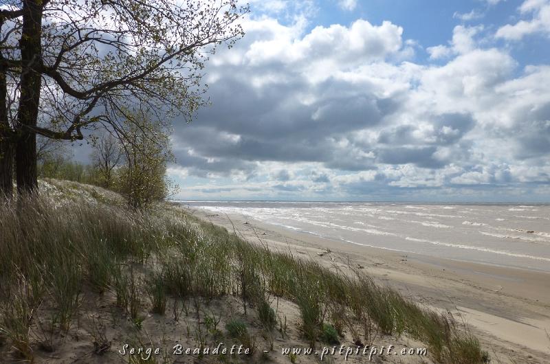 Cette nature qui se déchaîne donne quand même lieu à des paysages magnifiques avec des vagues gigantesques sur le Lac Érié et des sensations très fortes en expérimentant la force de la nature debout sur la dune! Que des sourires dans les visages!!!