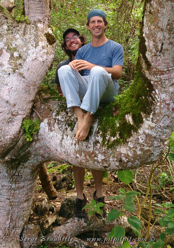 ...C'est tout pour les animaux colorés ou spectaculaires! Voici maintenant 2 méchants moineaux! Moi et Vincent, le guide de l'Équateur!!! Comme vous voyez ici, nous n'avons pas arrêté de nous taquiner... et nous avons eu avec tout le groupe, un plaisir fou!!!! Des moments forts, autant que des moments de fou rire et de folies, nous en avons eu en surabondance!!! (Je suis assis ici, sur une énorme branche d'un arbre qui aurait 120 ans environ, sur l'île du pirate (Floreana!) Arbre majestueux!)