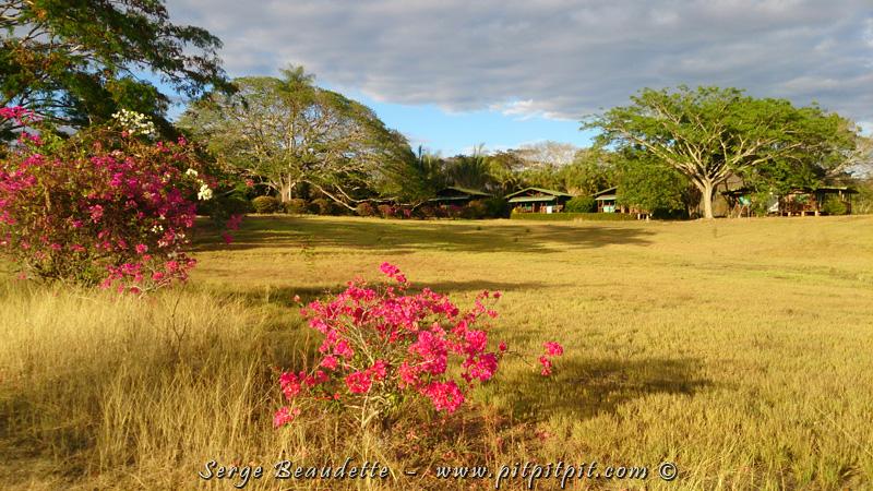 Nous sommes sur une énorme propriété (lire : « un immense terrain de jeu! ;-) …Versant Pacifique, mais au nord, là où il fait soleil pendant 4 mois, sans pluie!!!