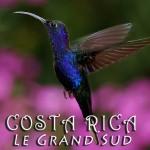 Costa Rica - Grand Sud