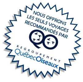 Voyages recommandés par QuébecOiseaux